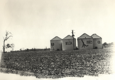 Old Delta Farms